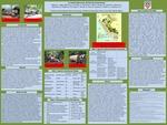 Un Análisis Multi-Escalar del Sistema Forestal Peruano by J. Boettner, G. Sager-Gellerman, E. Strickler, C. Courtenay, R. Gilb, W. Gordon, G. Leonard, J. Marconi, M. McGovern, M. Nagle, C. Paiz Tejada, Andrew Pericak, M. Price, D. Vassallo, R. Yowell, and David S. Salisbury