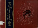 The Spider - vol. 4, 1900