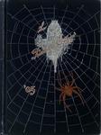 The Spider - vol. 5, 1905